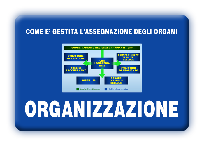 Come viene gestita l'assegnazione degli organi da trapiantare in Italia