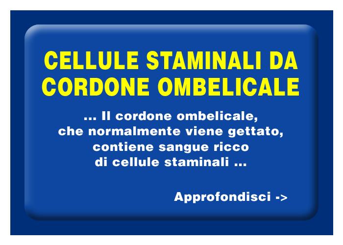 Quali organi e tessuti possono essere trapiantati - Le cellule staminali da cordone ombelicale