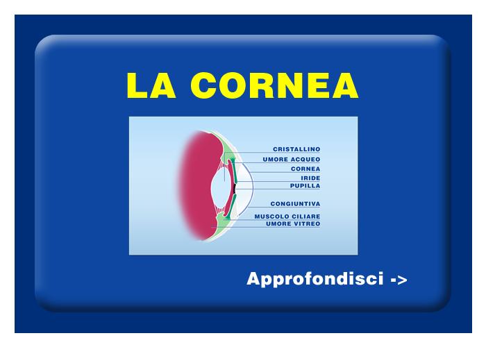 Quali organi e tessuti possono essere trapiantati - La cornea