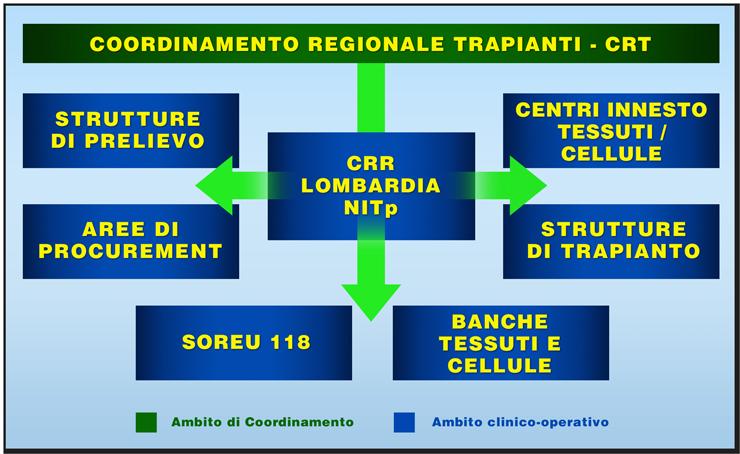 Aido Lomabardia - Chi e come gestisce l'organizzazione del trapianto di organi